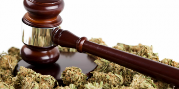 how to get a dispensary licence